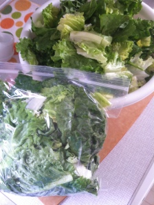 Tons of greens, all ready for a week's worth of lunches and suppers. Easy peasy.
