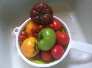 Fresh tomatoes waiting to be sliced and marinated. These are some beauties!
